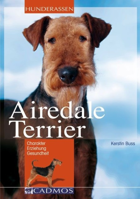 Airedale Terrier [Kerstin Buss]