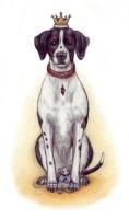 Der kleine Hundekönig [Birte Thedens]