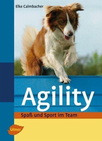 Agility: Spaß u. Sport im Team [Calmbacher]
