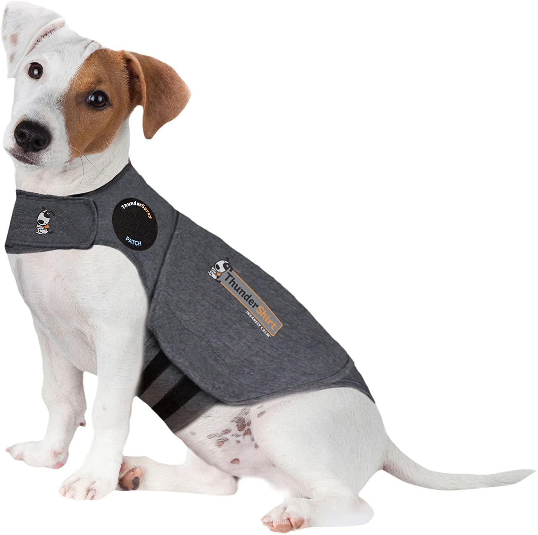 Thundershirt (für Hunde)