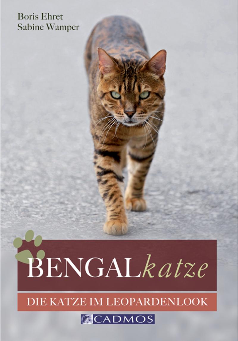 Cadmos -Bengalkatze [Ehret / Wamper]