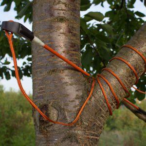 Dinoleine Spiel-und Reizangel 120cm mit Seil 150-300cm verstellbar