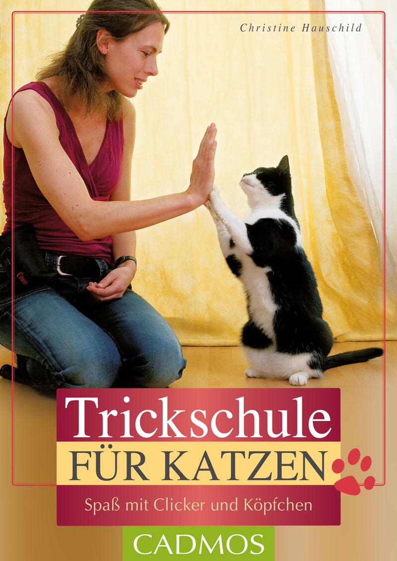 Cadmos - Trickschule für Katzen [Hauschild]
