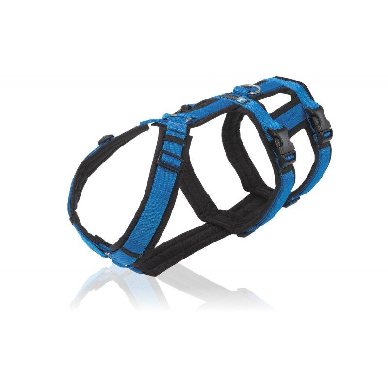annyx Geschirr Safety schwarz / blau