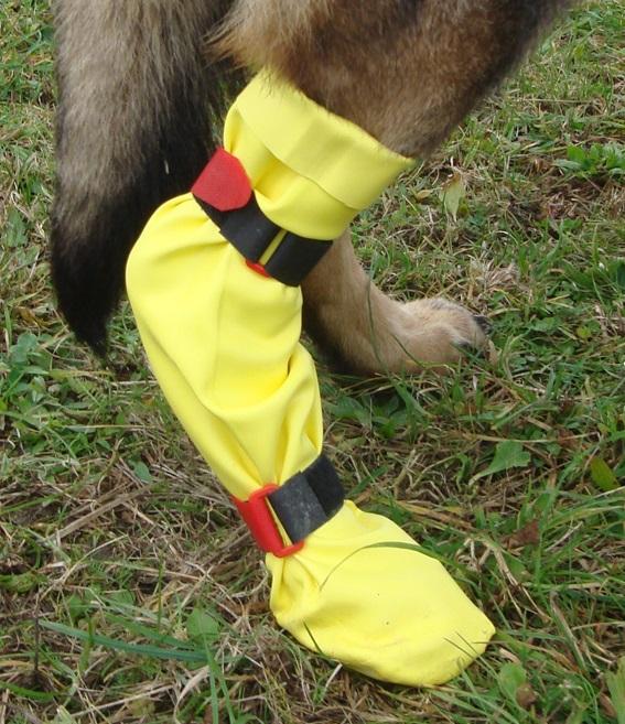 DogGusti® Strumpf aus Naturlatex
