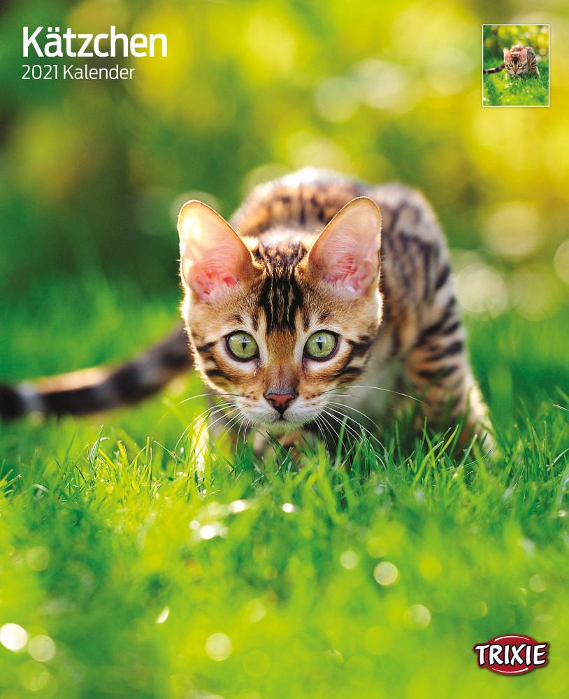 Trixie Kalender 2022 Kätzchen